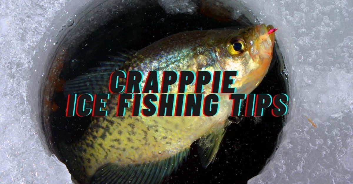 Crappie ice fishing tips. Crappie caught ice fishing.