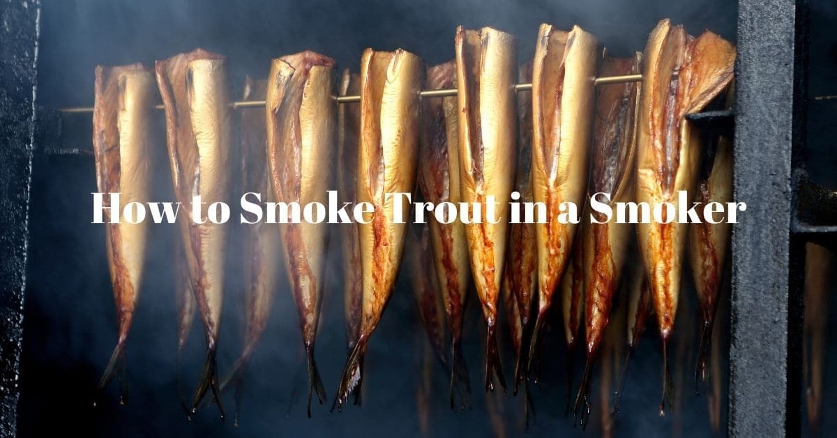 Fish in a smoker and the words How to Smoke Trout in a Smoker