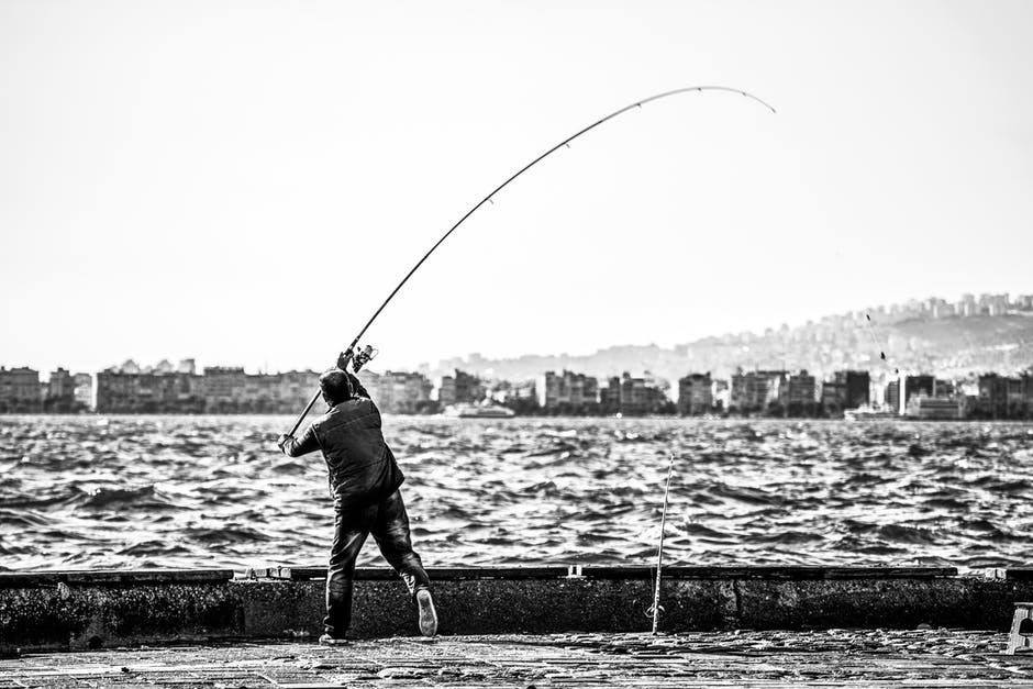 Man casting a fly rod. Black and white image.