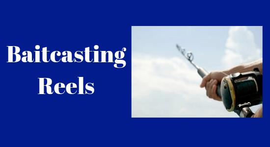 Baitcasting spinning reel