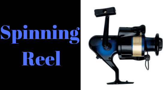 Spinning fishing reel.