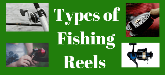 Different types of fishing reels. Baitcasting, fly fishing, spinning and spincast reels.