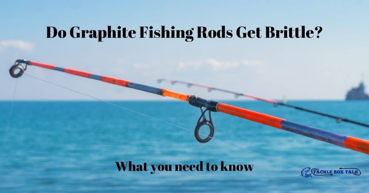 Two graphite fishing rods and the ocean in the background.