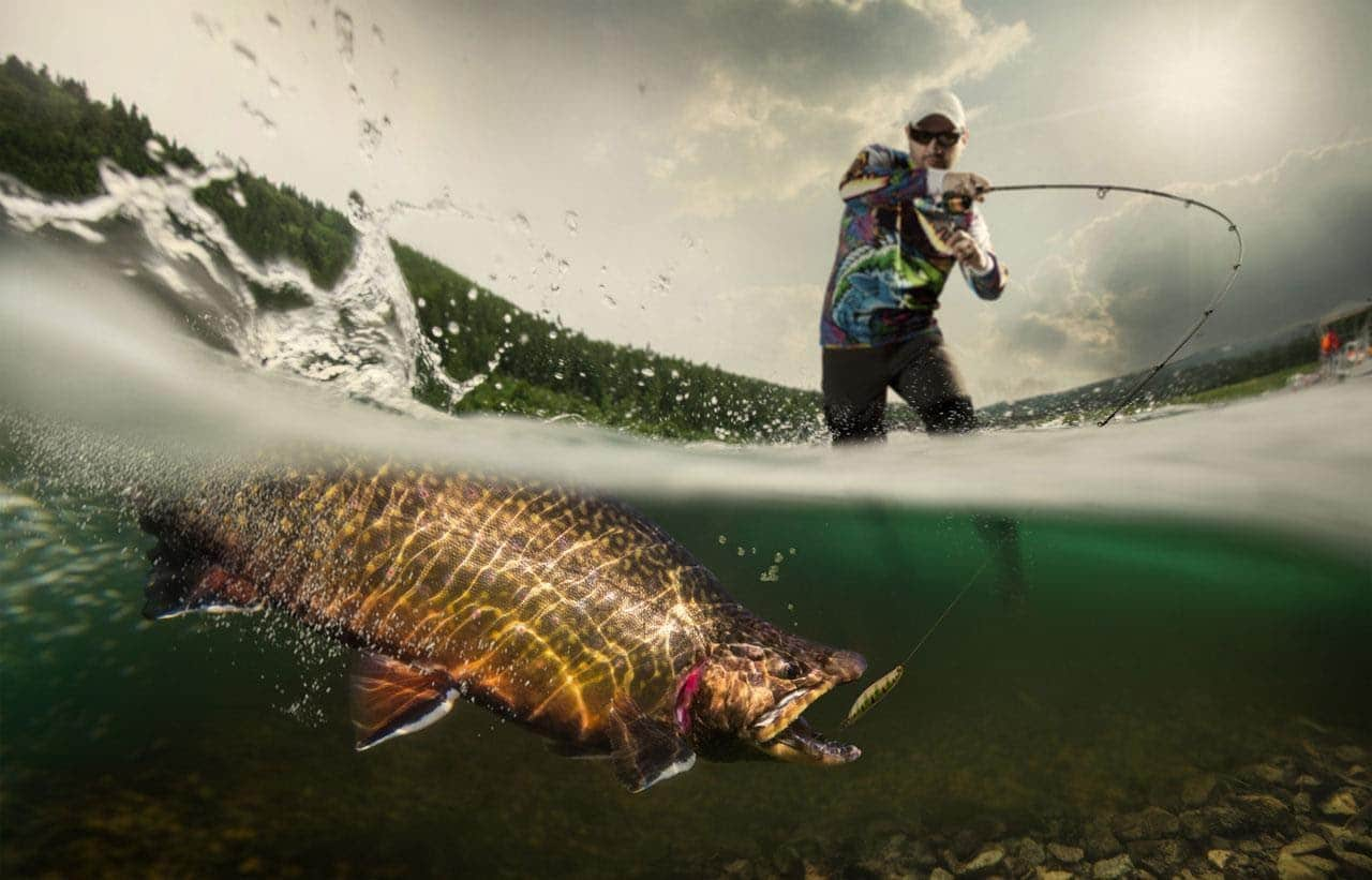 Professional angler catching a fish with 10 pound fishing line