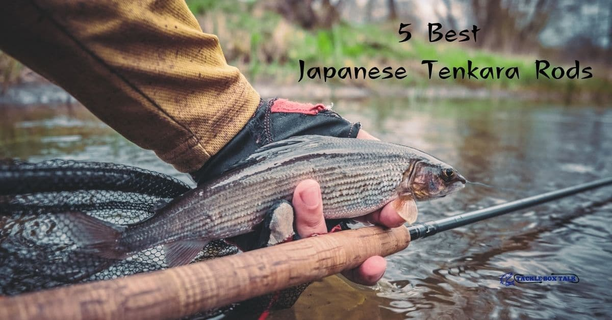 Man with a trout and a fly rod near a stream and the words 5 best Japanese Tenkara Rods.