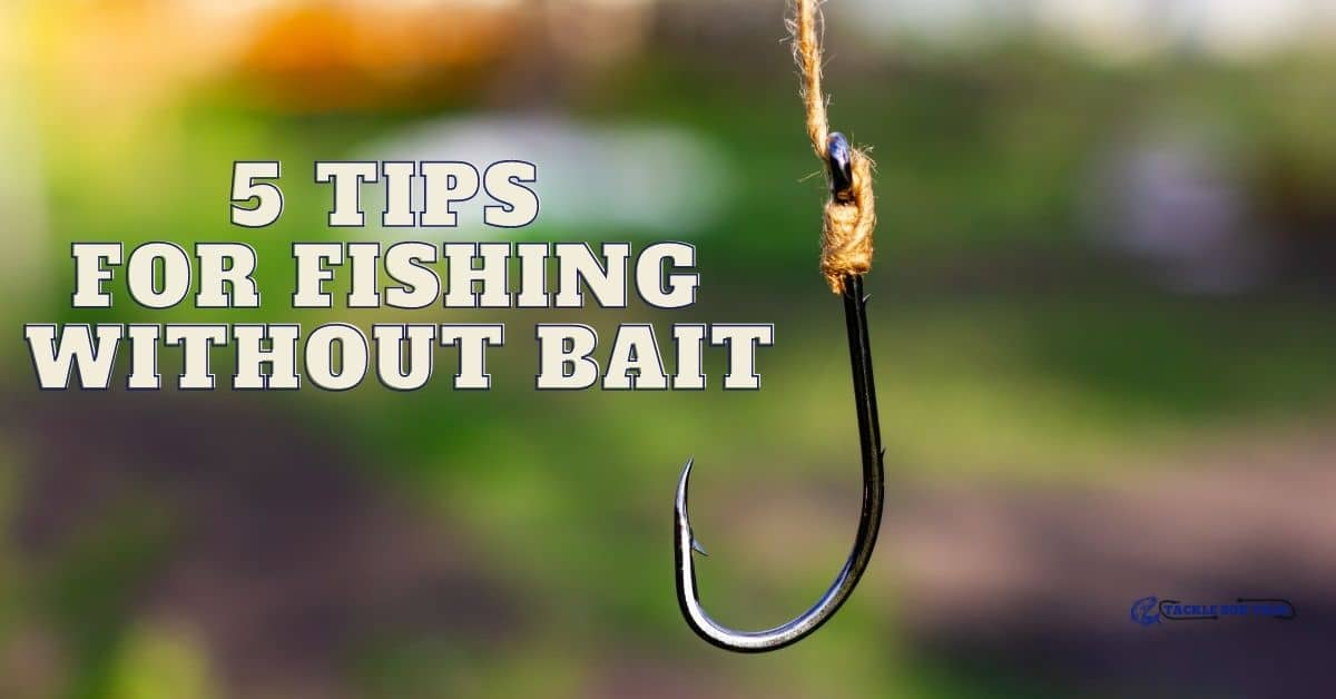 Fishing hook - 5 Tips For Fishing Without Bait