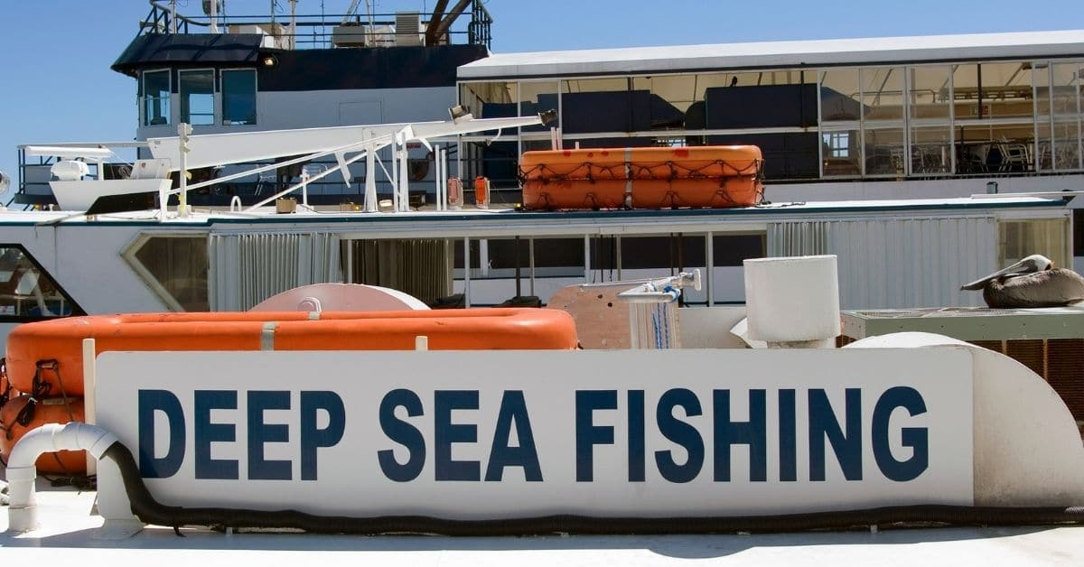 Deep Sea Fishing Excursion