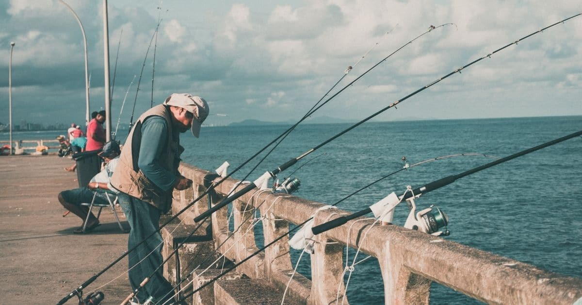 Fishing Rods Lined Up Along a Pier.