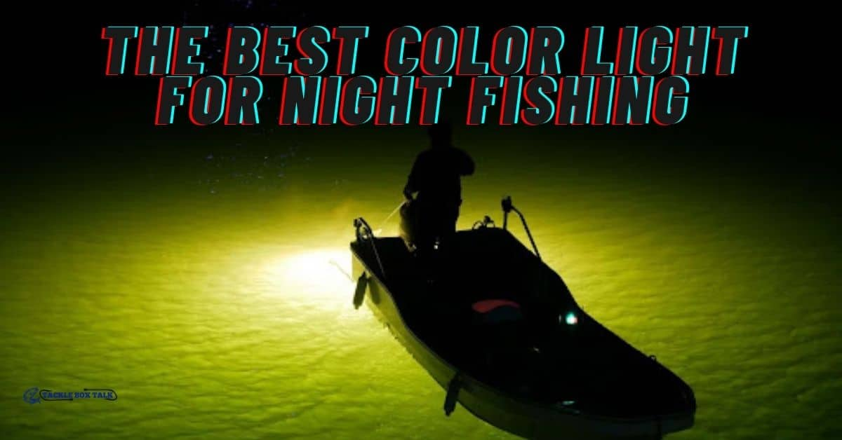 Angler fishing in boat at night - The Best Color For Night Fishing